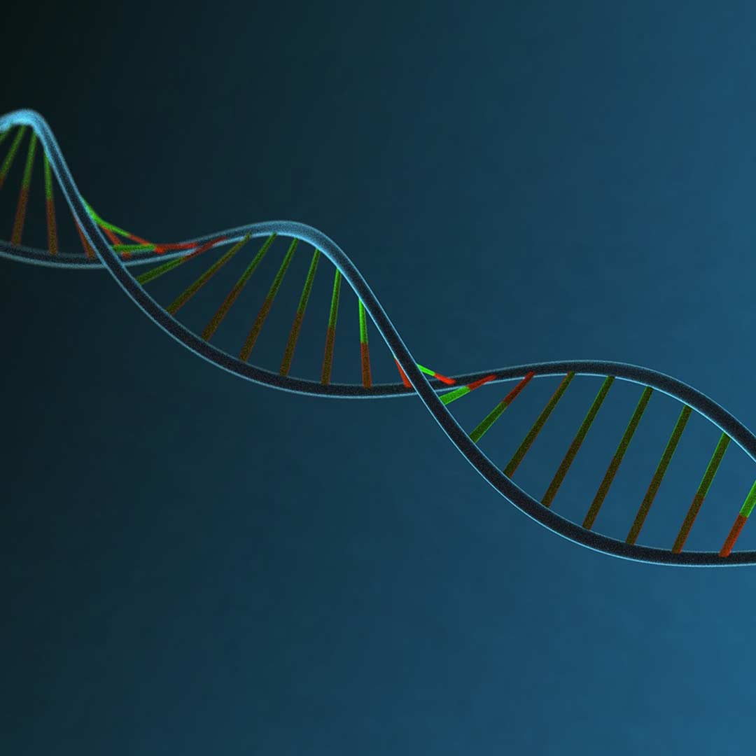 Marken-DNA